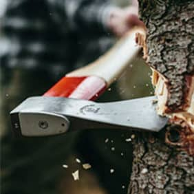 Herramientas para trabajos forestales