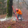 puntal forestal 1