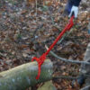 timber tong 1
