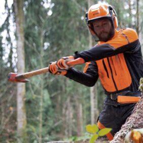 Eines per la tala i treballs forestals